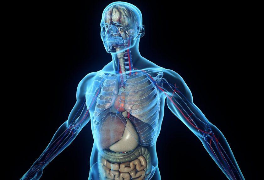 Chrononutrition- Understanding how your body works.